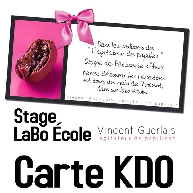 Carte Cadeau Stage